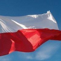 Magistrat rozdaje flagi
